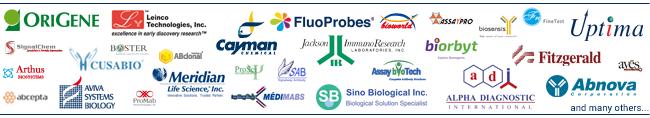 Logo_Partner_Antibodies_Interchim_0820