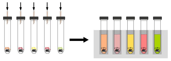 Reagent_Screen_System_Hepatochem_Interchim_0917